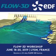 FLOW3D Jornada EDF Lyon